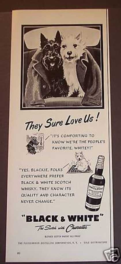 Black & White Whisky Blackie & Whitey the Dogs (1953)