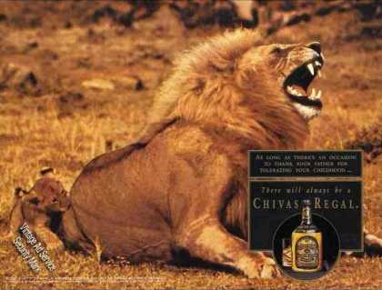 Impressive Male Lion & Cub Chivas Regal (1992)