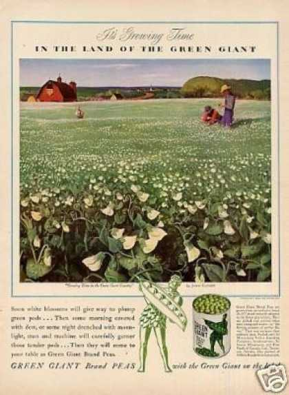 Green Giant Peas Ad John Clymer Art (1942)