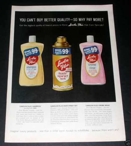 Lanolin Hair Care Products, Exc (1961)