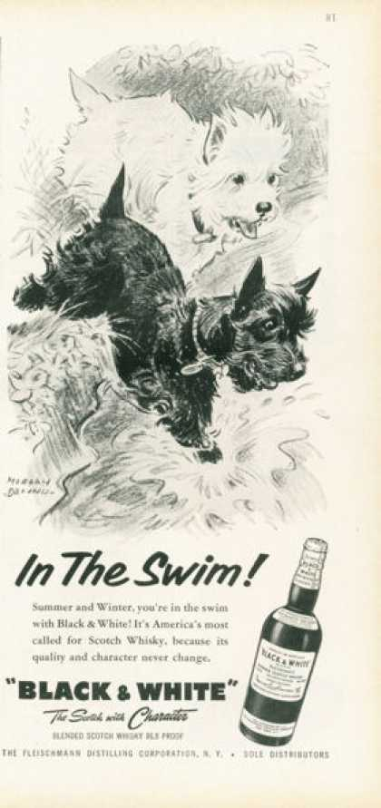 Black & White Scotch Ad In the Swim! Swimming (1959)