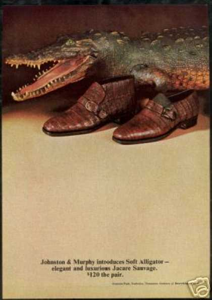 Alligator Photo Johnston Murphy Shoe Photo (1969)