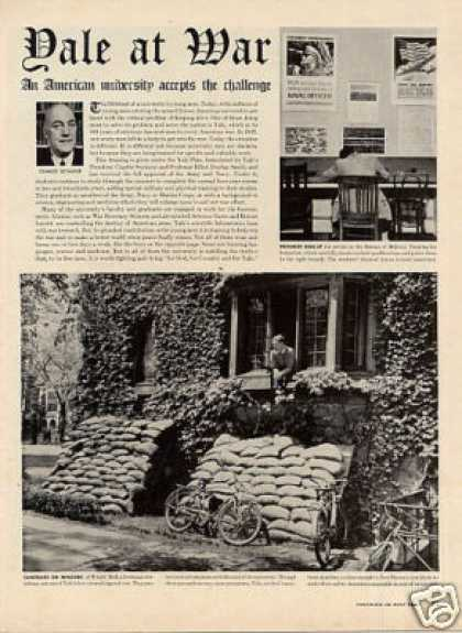 """Yale at War"" Article/yale University (1942)"