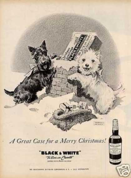 "B&w Ad ""A Great Case For..."" Westie/scottie (1958)"