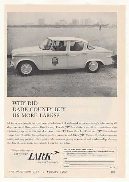 Dade County FL Studebaker Lark Fleet Car (1960)