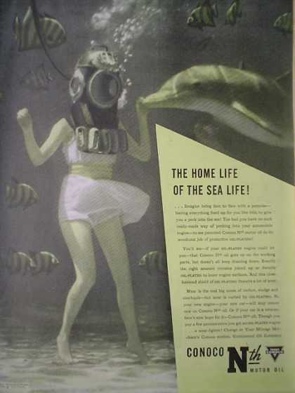 Conoco Nth Motor Oil Home life of the Sea Life (1946)