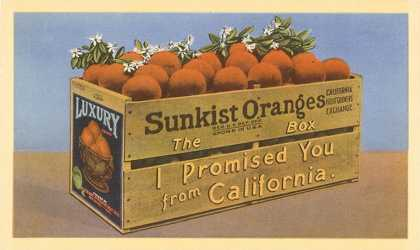 Crate of Oranges from California