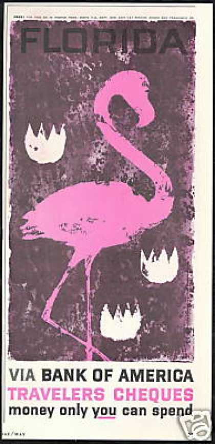 Florida Pink Flamingo Bank of America (1959)