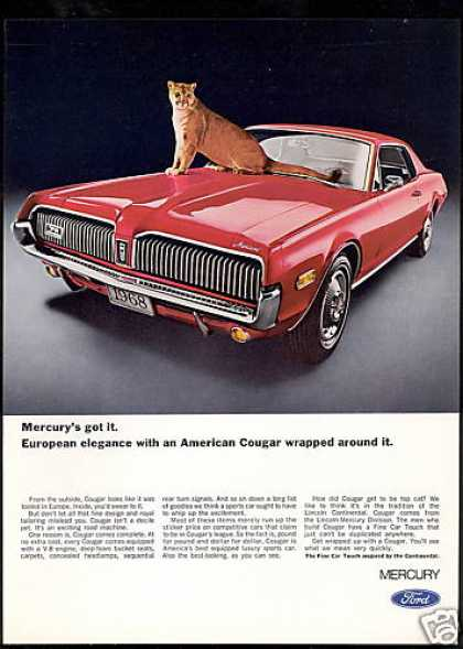 Red Mercury Cougar Car Cat Photo (1968)
