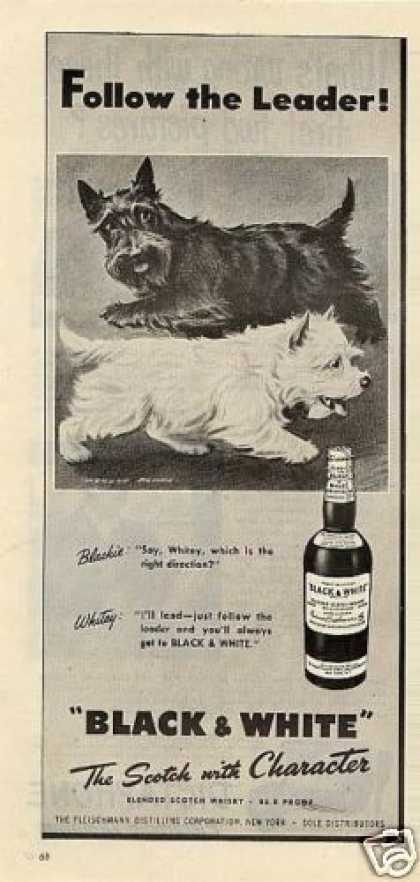 B&amp;w Ad &quot;Follow the Leader!&quot; Westie/scottie (1947)