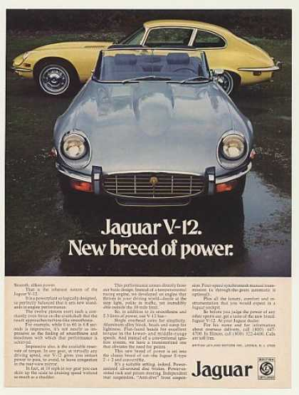 Jaguar V-12 New Breed of Power Photo (1973)