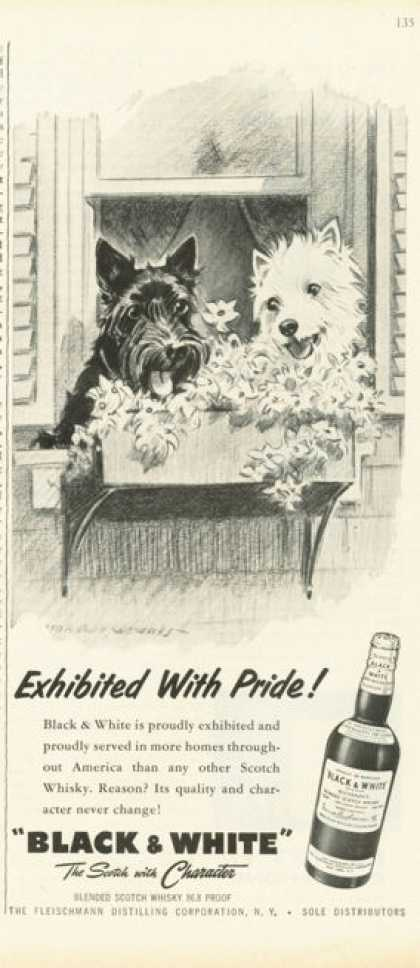 Black & White Scotch Ad Exibited With Pride (1959)