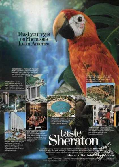 Sheraton's Latin America Hotel Beautiful Parrot (1980)