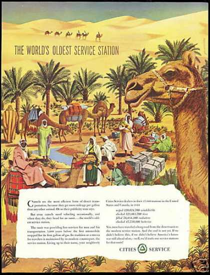 Camel Desert Oasis Cities Service Vintage (1950)