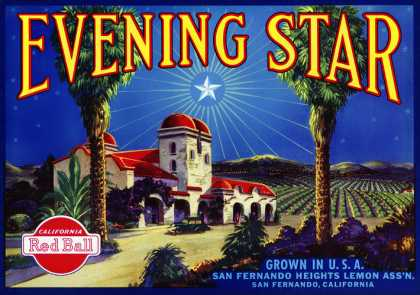 Evening Star Lemons, c. (1940)
