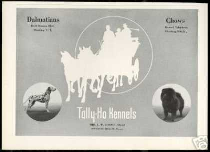 Dalmatian & Chow Dog Breeder Tally-Ho Kennels (1936)