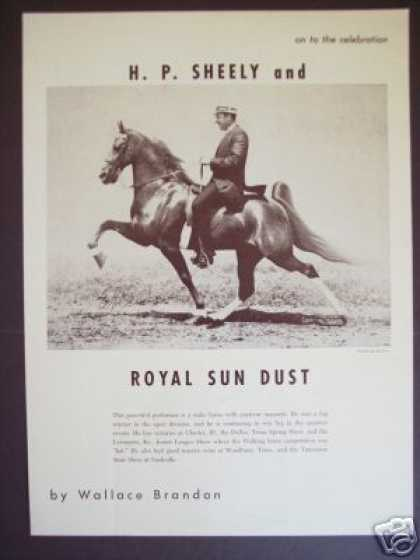 Show Horse H. P. Sheely On Royal Sun Dust Photo (1965)