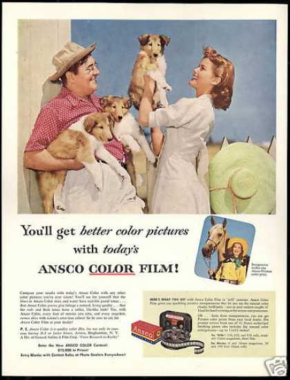 Ansco Camera Film Collie Dog Puppies (1953)