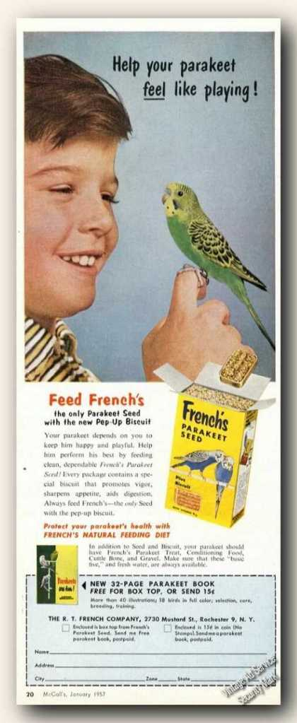 Parakeet Photo French's Seed Rochester Ny (1957)