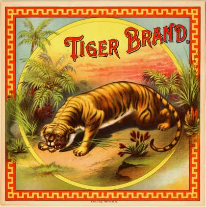 [Tiger Brand]'s unknown – Tiger Brand