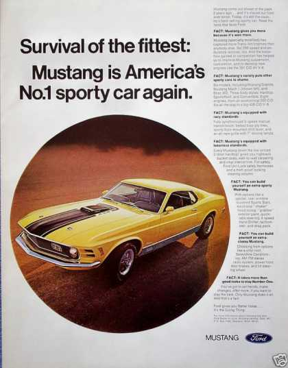 Ford Mustang Yellow Black Stripe Sport Car Fittest (1970)