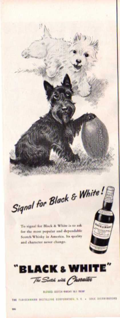 Black & White Scotch Ad Football (1955)