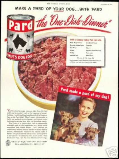 Cute Terrier Photo Pard Dog Food Vintage (1947)