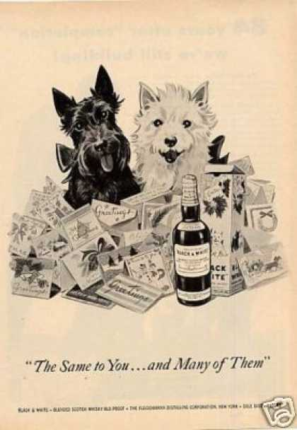 "B&w Ad ""The Same To You..."" Westie/scottie (1953)"