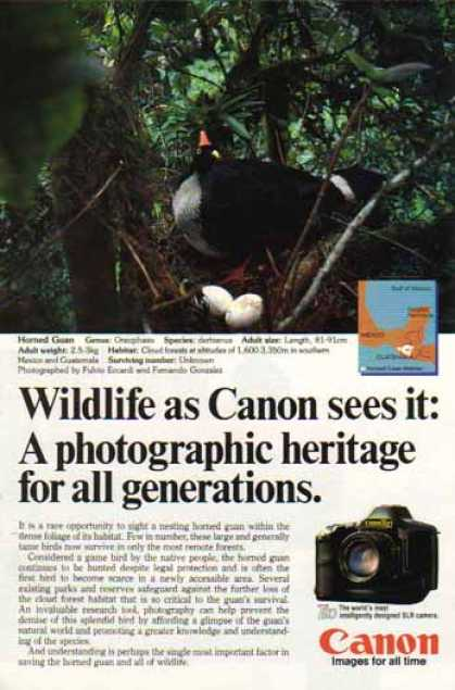 Canon T90 SLR Camera – Horned Guan Bird (1987)