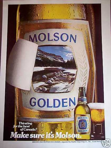 Molson Golden Canadian Ale Bar Art (1981)