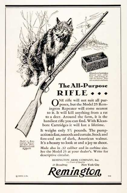 Remington 25 Rifle (1929)