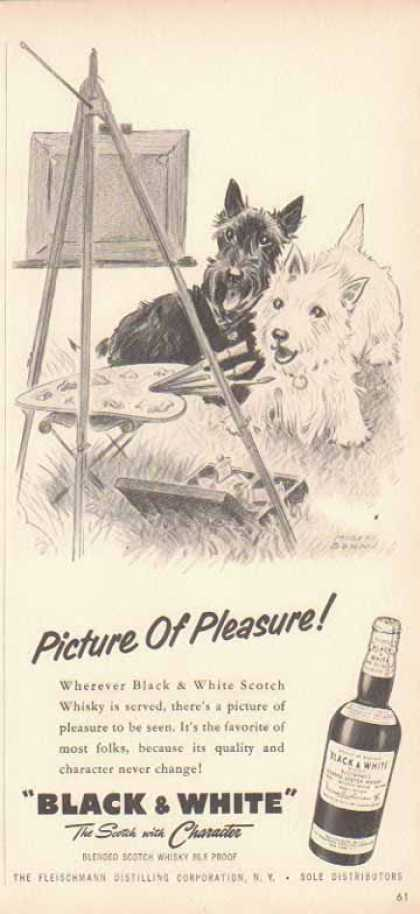 Black & White Scotch Whiskey Scottish Terriers – Picture Of Pleasure (1958)