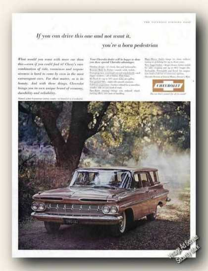 Chevrolet Station Wagon In Woods Photo (1959)