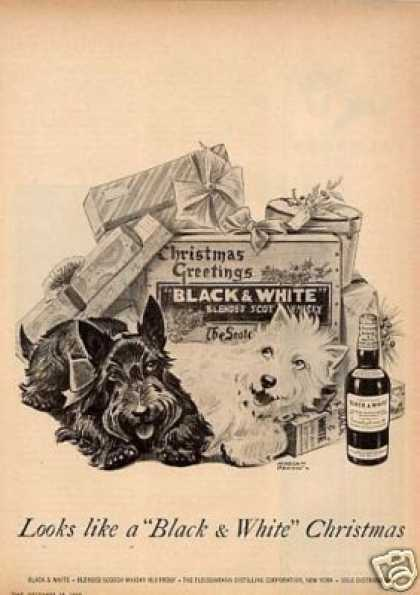 "B&w Ad ""Looks Like a Black & White..."" Scottie (1955)"