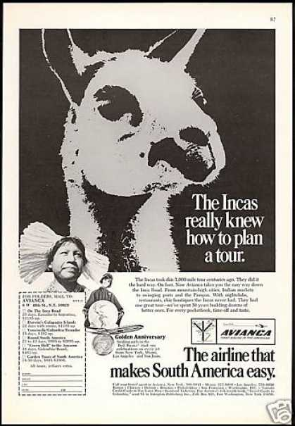 Llama Incas Avianca Airlines South America (1969)