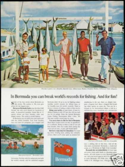 Bermuda Travel Photo Fish Stories Vintage (1966)