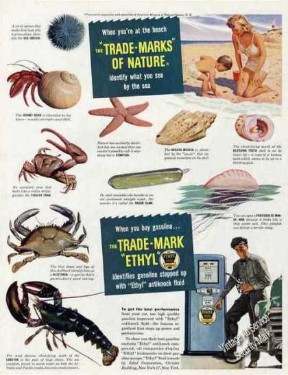"Impressive Shellfish Art ""Ethyl"" Antiknock (1948)"
