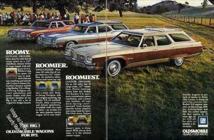 Oldsmobile Station Wagons (3) In Field Nice Car (1972)