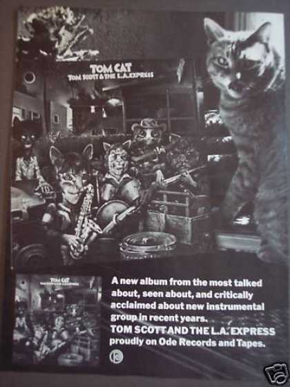 Tom Cat Tom Scott & the L.a. Express Music (1975)