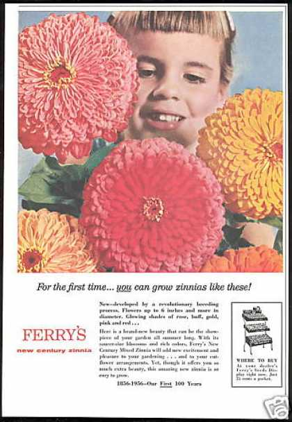 Ferry's Seeds Century Mixed Zinnia Flower (1956)