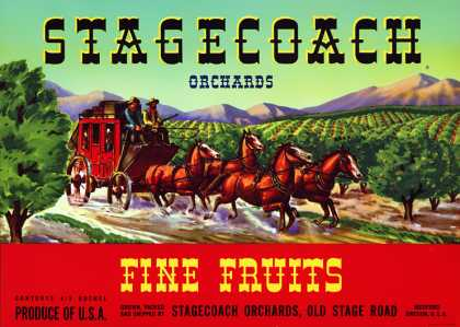 Stagecoach Orchards, c. s (1950)