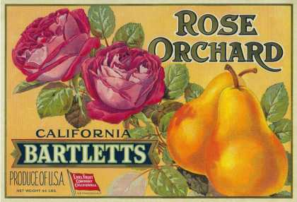 Rose Orchard Pear Crate Label – San Francisco, CA