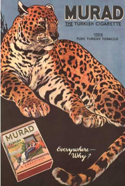 Murad, Cigarettes Smoking Leopards, USA (1910)