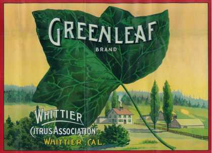 Greenleaf Lemon Label – Whittier, CA