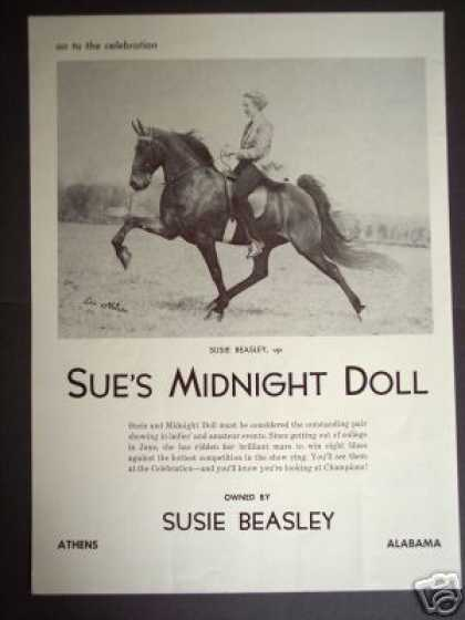 Show Horse Sue's Midnight Doll Les Nelson Photo (1965)