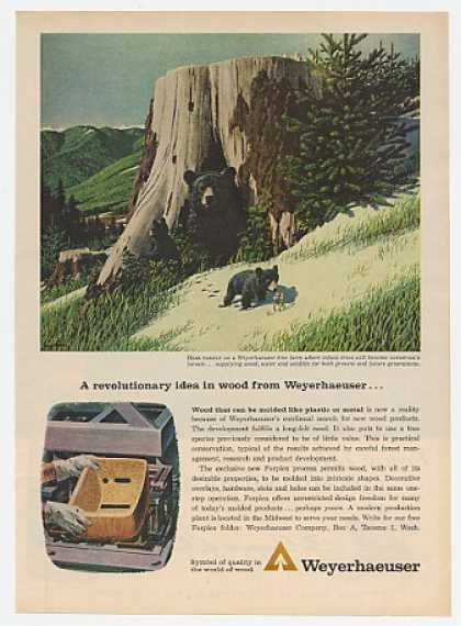 Bear Family art Weyerhaeuser Tree Farm (1963)
