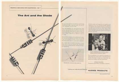 Hughes Diodes Ant and Diode Photo (1958)
