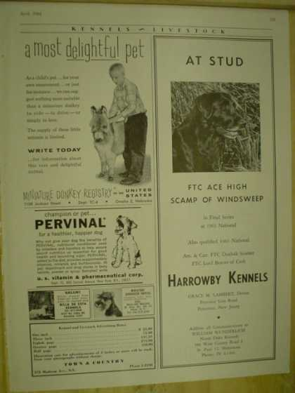 Harrowby Kennels Miniature Donkey Registry (1964)