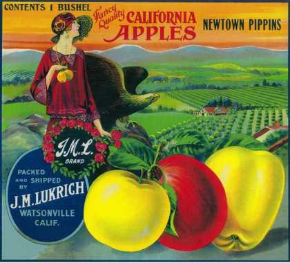 J.M.L. Apple Crate Label – Watsonville, CA