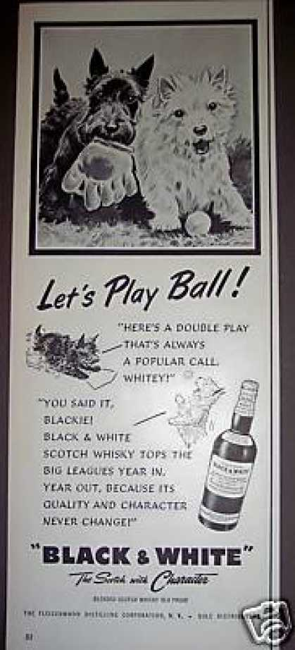 Scottie Dogs Play Ball Art Black & White Scotch (1954)